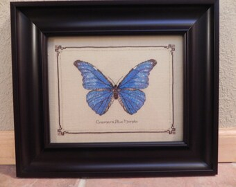 Blue Morpho Butterfly Cross Stitch Framed