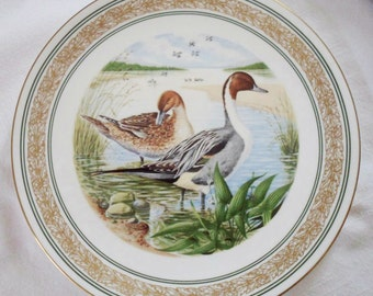 1985 Royal Worcester 'Water Birds Of North America' Collector's Plate AMERICAN PINTAILS
