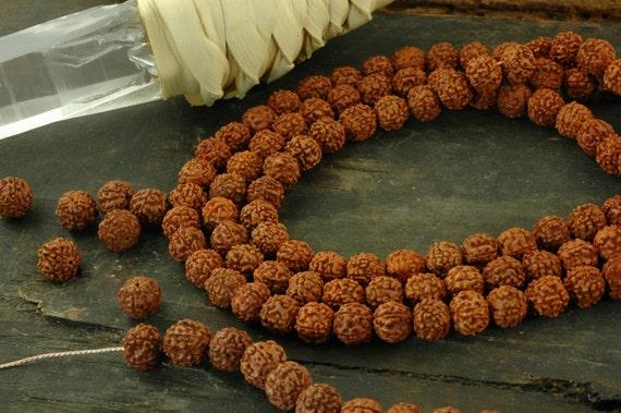 Shiva Tears: 10mm Rudraksha Beads / 108 beads / Natural Indian Seeds / Yoga, Spiritual, Buddhism Jewelry Making Supplies