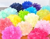 8 Nursery Tissue Poms {You choose colors!}