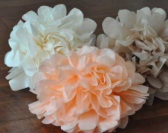 6- tissue Pom Poms {peachy keen}