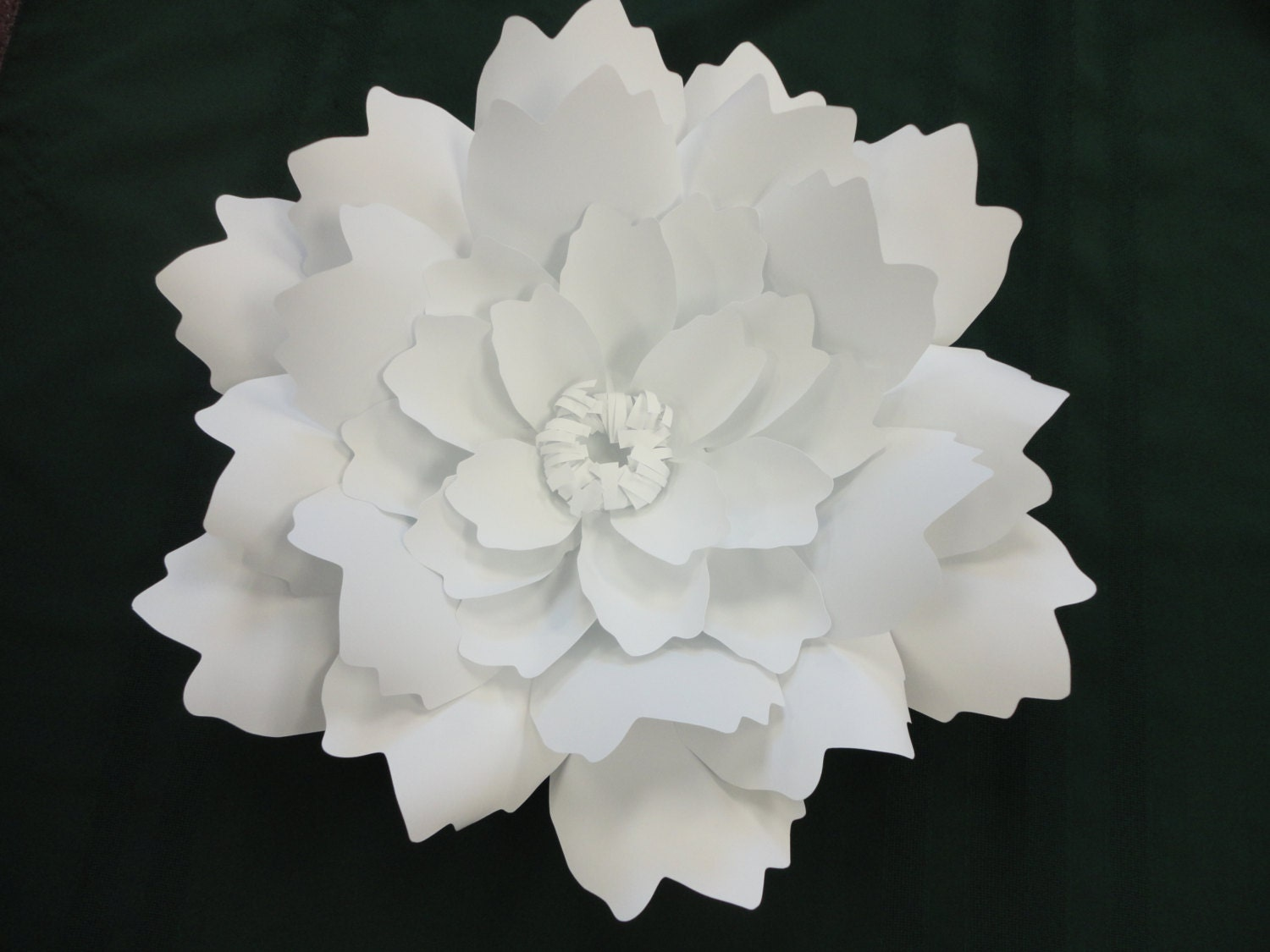 extra large peony paper peony white photo prop backdrop