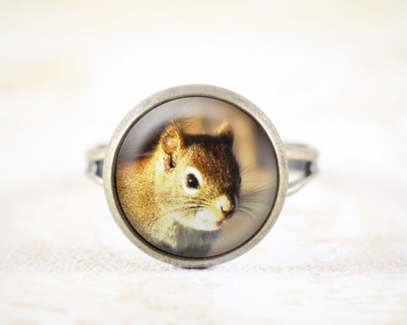 Red Squirrel Ring - Woodland Animals, Squirrel Jewelry, Bronze Ring, Squirrel Animal Ring, Woodland Squirrel Jewellery, Small Ring