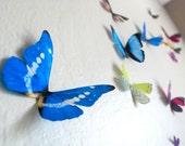 Realistic 3D Wall Butterflies- set of 20