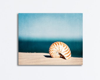 "Seashell Canvas Photography - beach sea shell blue orange beige brown gallery wrap large seashore coastal wall art nautical - ""By the Blue"""