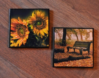 Autumn Bench and Sunflower Ceramic Coasters