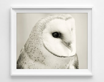 "Owl Photograph Unframed / dreamy mysterious fantasy folk / black and white woodland creature winter fall / photography print / ""Pale Jewel"""