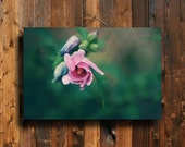 Pink and Green - Flower Photography - Flower art - Flower decor - Pink Flower photography - Flower canvas - Pink and green art