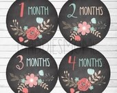 Monthly Baby Stickers Baby Girl Month Stickers Milestone Monthly Photo Stickers Chalk Board Floral Baby Shower Gift(Chalkboard Flowers 3)
