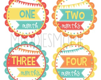 Monthly Baby Girl Stickers Baby Month Stickers, Monthly Bodysuit Sticker Mod Coral Olive Hot Air Baloons (Beach Party)