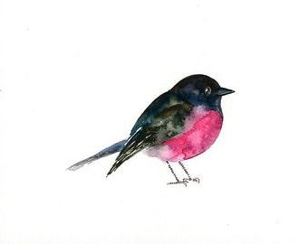 PINK ROBIN 7x5inch -Art Print-Bird Watercolor Print-Giclee Print-bird print