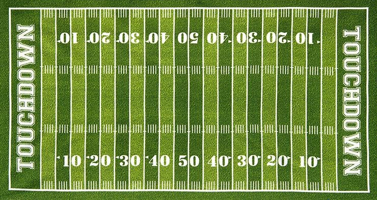 Touchdown End Zone Football Field Panel From Robert Kaufman