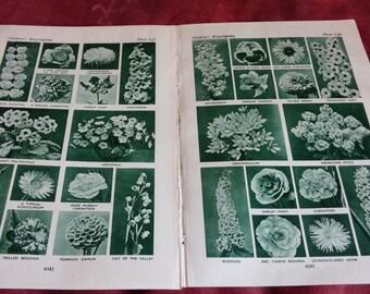100 British GARDEN FLOWERS dark green photogravures Vintage Botanical Prints - book illustrations - Vintage Print - Vintage Flower Print