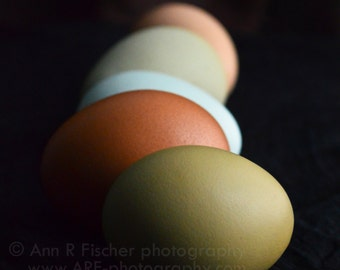 Colorful Eggs in Shadow Photo, Nature Photography, Easter Fine Art Photography, Still Life, Easter Gift, Egg Photo