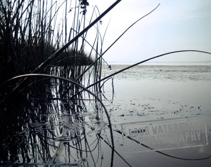 No Hippos, Just Reeds, International Travel, Africa, Lake Langano, Ethiopia 8x10 11x14 16x20 Landscape Fine Art Photograph