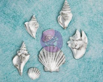 SALE Prima Seashell Resin Treasures Shabby Chic (NEW 2014) - Molded Resin Embellishments - 7pcs
