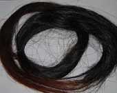 Horsehair - Natural, 100% Connemara Pony Mane or Tail for Jewelry & More