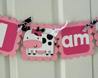 Girl Farm Highchair Banner, Farm Highchair Banner,  Farm Banner, Farm I am 1 Banner, Farm first birthday, barnyard banner, barnyard I am 1