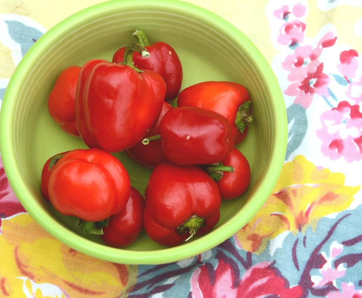 how to grow red peppers from seed