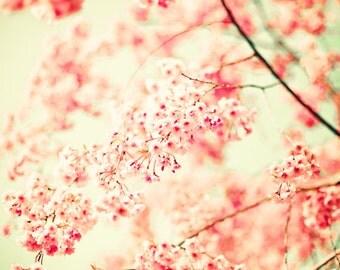 SALE, Blush pink wall art, blush pink prints, large art, large wall art, nature photography, cherry blossom, art, wall art, wall decor