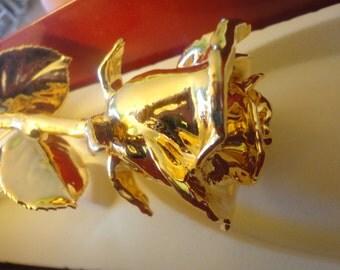 24KT Gold Dipped Rosé