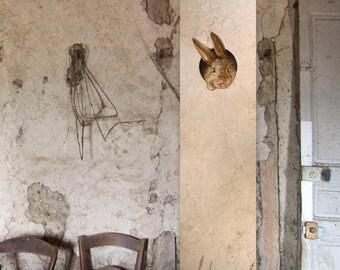 """Wallpaper  """"Jonny in the fields"""""""