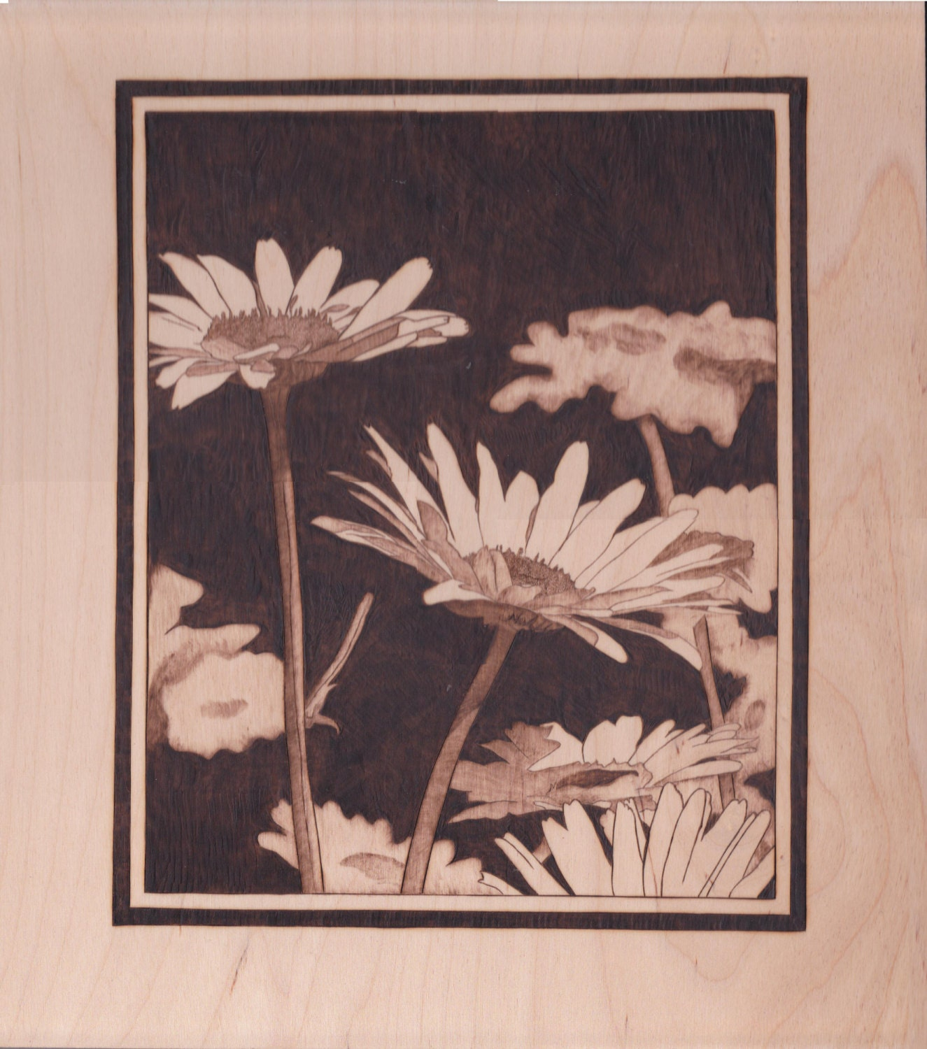 Woodburn Pyrography Art Daisies With Frame Flowers Wall Art