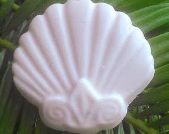 Shell Shaped Shea Butter Soap   Bath   Bar Soap   Beach Soap