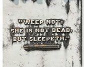 Cemetery Plaque Photo - Cemetery Photography - Weep Not She is Not Dead but Sleepeth - Victorian Death Plaque - Weep Not Saying