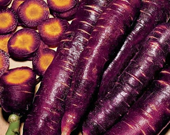 Cosmic Purple Heirloom Carrot Seeds Antioxidant Lycopene Non GMO