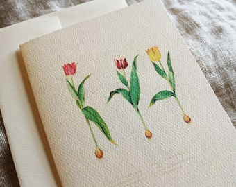 Tulip Folded Note Cards with Envelopes | Blank Notecard Set