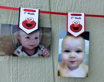 Red and Black Elmo First Birthday Pennant Photo Banner