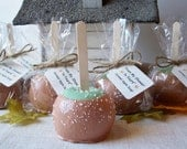 Caramel Apple Soap ~ Christmas, Bath, Home, Gifts, Autumn, Primitive, Fall, Parties, Favors, ACOFT, OFG team, SKIRT