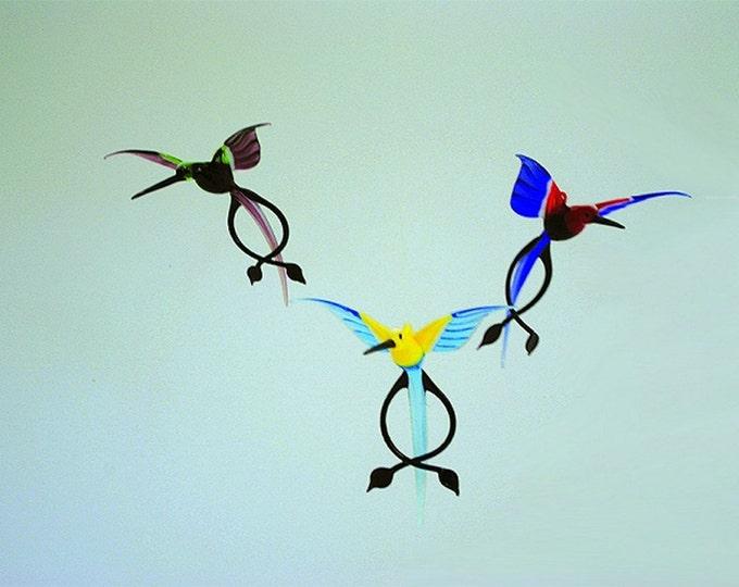e36-259 Double-Tail Hummingbird