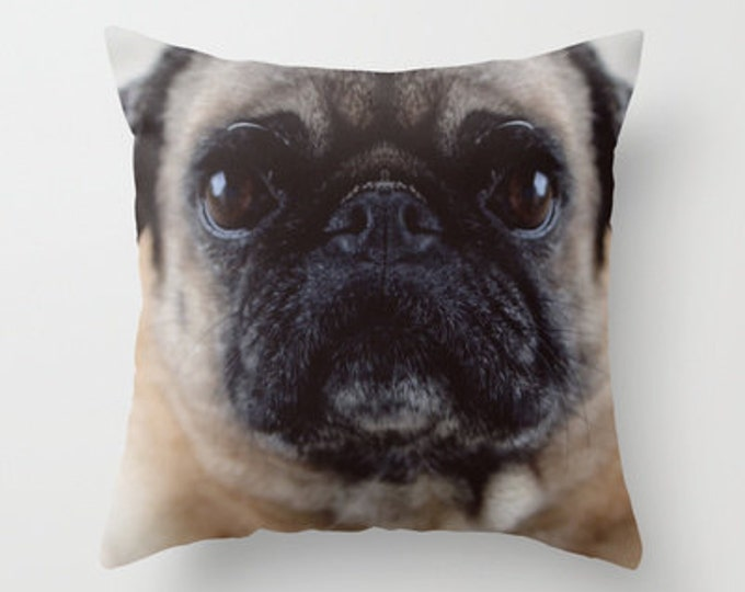 Pug Pillow Cover - Cover Only - Pug Photograph - Pug throw Pillow - Couch Pillow - Sofa Pillow - Animal Pillow - Made to Order
