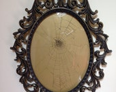 Real Spiderweb in Brass Bubble Glass Frame