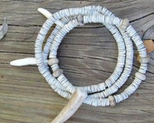 Natural  bracelet with coyote teeth, a deer antler tip, fossil beads and shell beads