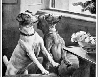 Art Print Cats and Dogs Illustrated London News 1894 Print 8 x 10