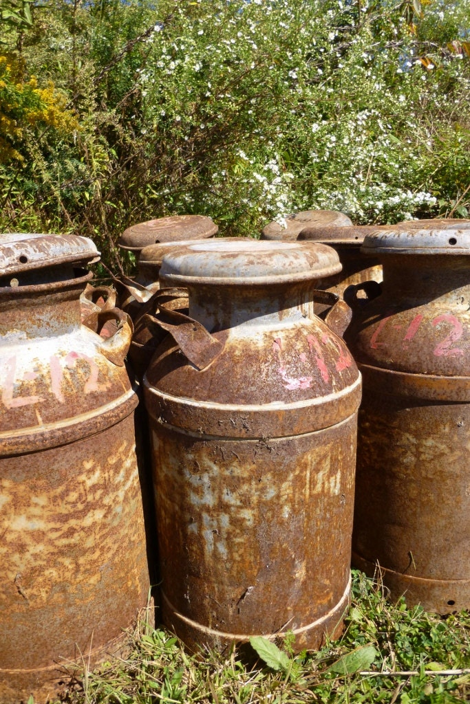 Rusty antique milk can primitive home and garden decor fresh for Garden accessories sale