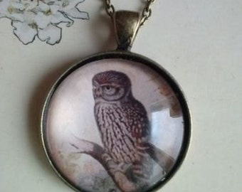 owl picture pendant necklace charms forest animals
