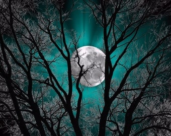 Teal Wall Art Photography/Tree Moon/Bedroom Home Decor Matted Large Picture