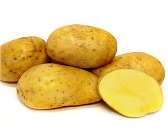Bintje Potato Seed Certified Organic and Virus Free 2 Lbs. - Spring Shipping Seed Potatoes Non-GMO