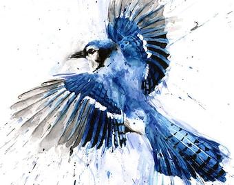 BLUE JAY PAINTING - watercolor blue jay, blue jay art, bird art, bird painting, bird lover, blue bird, bird decor, bird print, bird portrait