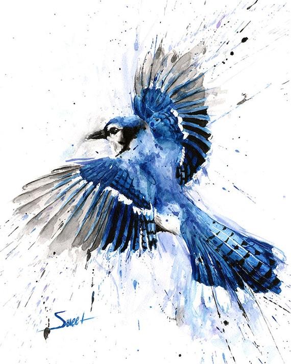 Geai bleu peinture aquarelle geai bleu geai bleu art art for Decor 52 fan celano ma dw