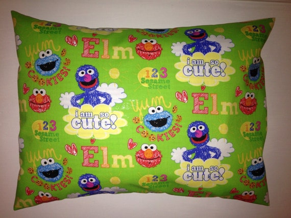 Travel Pillow Case Sesame Street Friends Green