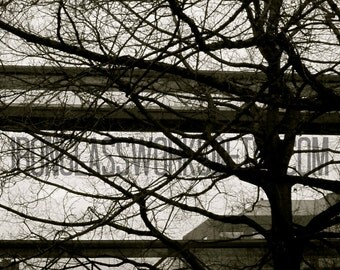 Photograph, Nature photograph, Architectural photography, 8x10, black and white ,Portland Oregon, Fine Art, Wall Art