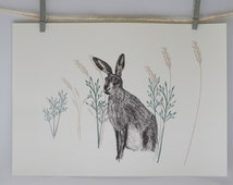 Wild Hare A4 print