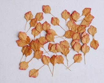 Paper Flower, 50 Leave, brown color, Handmade.