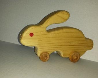 Rolling Bunny Rabbit
