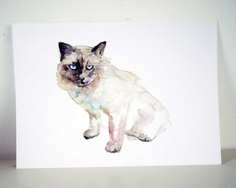 Original Cat Watercolor Painting. Animal painting. Pet Zen drawing in a4 size. OOAK Art on carboard.